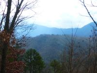 Home for sale: 00 Anderson Creek Rd., Franklin, NC 28734