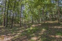 Home for sale: 1221 Curtright Pl., Greensboro, GA 30642