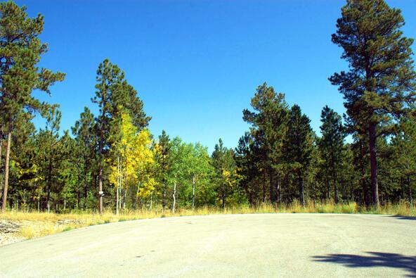 Lot 2, Springwood Ct., Lead, SD 57754 Photo 8
