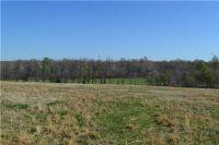 Home for sale: Wann Rd., Sulphur Springs, AR 72768