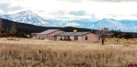 Home for sale: 30333 Old West Rd., Hotchkiss, CO 81419