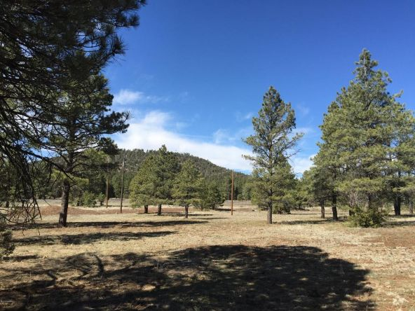 3602 E. Mountain Man Trail, Williams, AZ 86046 Photo 24