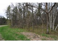 Home for sale: Lot 4 Spring Loop, Breezy Point, MN 56472