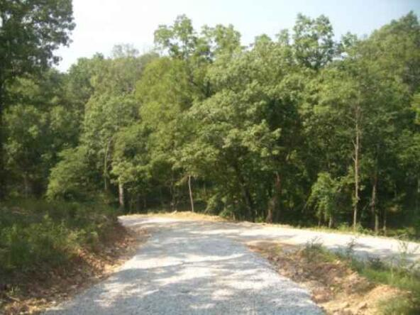Tract 5 Winding Woods, Clinton, MO 64735 Photo 4