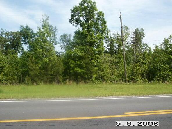 Lt 14 & 15 69 Hwy., Oakman, AL 35579 Photo 9