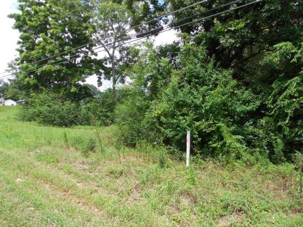 3 Acres Hwy. 103, Slocomb, AL 36375 Photo 5