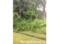 Home for sale: 755 Carnival Port, Port Saint Lucie, FL 34983