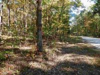 Home for sale: F Ross Mountain Rd., Mountain Rest, SC 29664