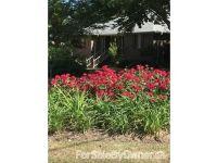 Home for sale: 1208 Broad St., Albertville, AL 35950