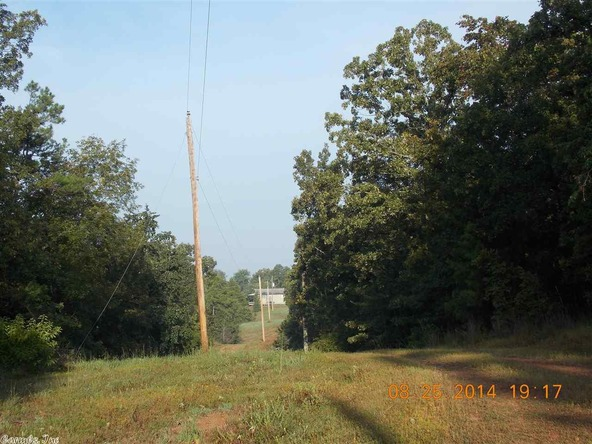 1105 Walnut Grove Rd., Hector, AR 72843 Photo 15