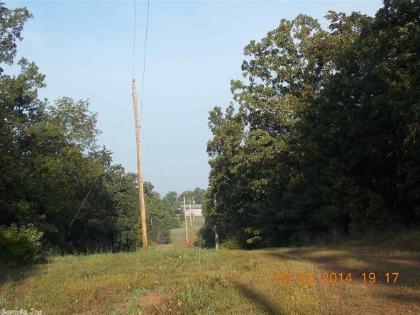 1105 Walnut Grove Rd., Hector, AR 72843 Photo 14