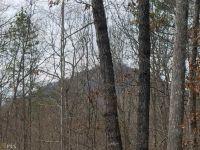 Home for sale: 0 Leatherwood Rd., Toccoa, GA 30577
