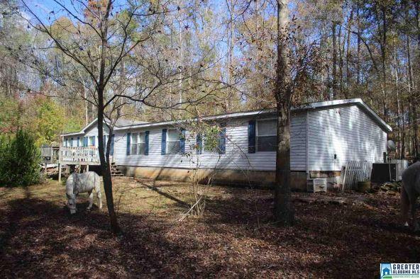 32723 Hwy. 25, Wilsonville, AL 35186 Photo 1