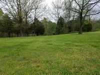 Home for sale: 1261 Mule Barn Lot 32 Dr., Cape Fair, MO 65624