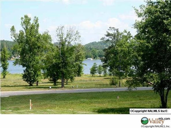 C Summerhill Dr., Guntersville, AL 35976 Photo 11