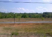 Home for sale: Lot 6 Union Station Dr. Frontage Rd. Off Clemson Blvd. At Forest Dr., Seneca, SC 29678