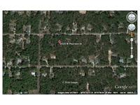 Home for sale: 1420 Pearson, Hernando, FL 34442