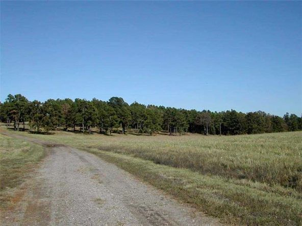 11300 Mountain Valley Rd., Mansfield, AR 72944 Photo 14