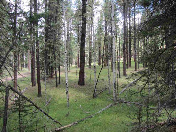 119 W. Pecos Canyon Estates Rd., Tererro, NM 87573 Photo 31