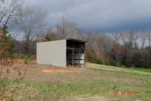 331 Cr 586, Rogersville, AL 35652 Photo 12