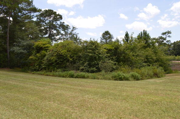 302 Rabbit Run, Enterprise, AL 36330 Photo 20