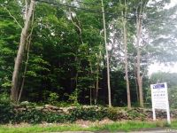Home for sale: 207 Spring Hill Rd., Monroe, CT 06468