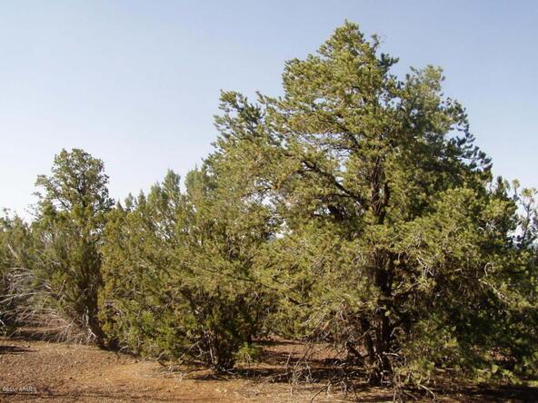 46 Uphill Trail, Vernon, AZ 85940 Photo 4