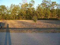Home for sale: Lot 24 Twin Oaks, Bristol, FL 32321