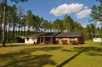 Home for sale: 164 Joshua Ln., Ocilla, GA 31774