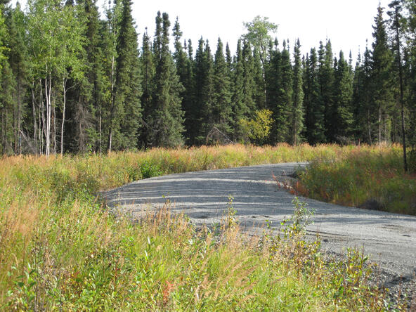 L11 B3 Fairweather Loop, Soldotna, AK 99669 Photo 2