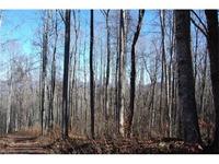 Home for sale: 9999 Granite Cliffs Ct., Waynesville, NC 28785