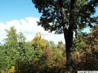 Home for sale: 12 S. County Rd. 89, Mentone, AL 35984