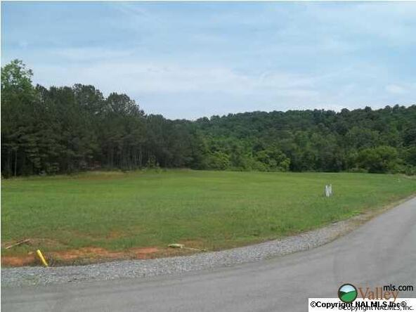 2 Carlton Rd., Scottsboro, AL 35769 Photo 5