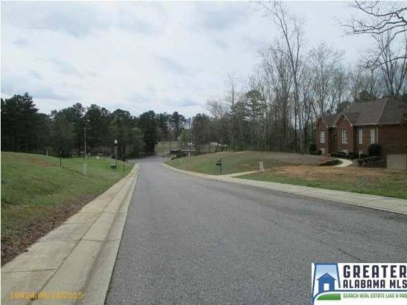 100 Nottingham Dr., Pell City, AL 35128 Photo 8