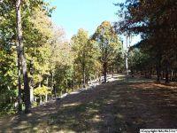 Home for sale: 14 S. County Rd. 89, Mentone, AL 35984
