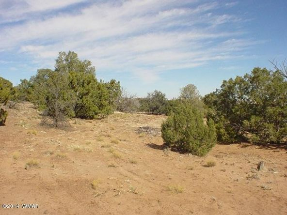 1a N. 8690, Concho, AZ 85924 Photo 58