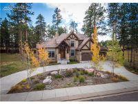Home for sale: 645 Meadowlark Ln., Woodland Park, CO 80863