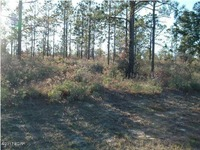 Home for sale: Lot 20 Newmoon Dr., Chipley, FL 32428