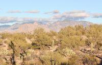 Home for sale: 4801 N. Gerhart Rd., Tucson, AZ 85745