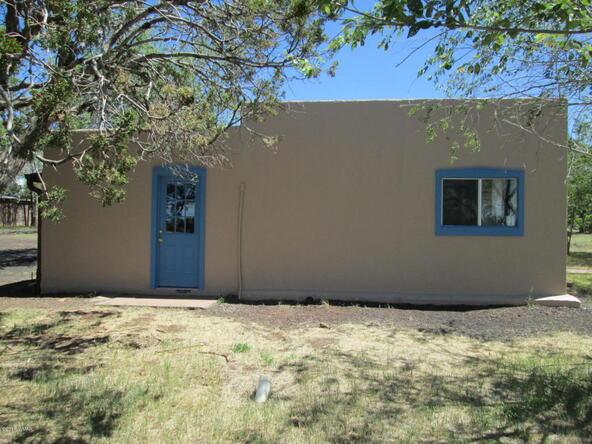 1593 Cr 3140, Vernon, AZ 85940 Photo 21