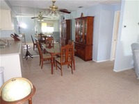 Home for sale: 3854 Trophy Blvd., New Port Richey, FL 34655