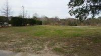 Home for sale: 1555 Paradise Lake Dr., Mount Pleasant, SC 29464