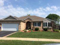 Home for sale: 979 Patricia Ln., Crete, IL 60417