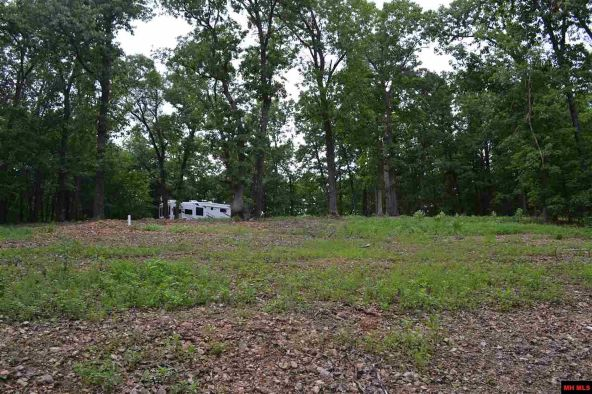 390 Mc 3041, Yellville, AR 72687 Photo 10
