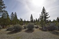 Home for sale: 12.07 Acres End Of Jaygene Ct., Etna, CA 96027