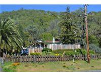 Home for sale: 9483 Glenhaven Dr., Glenhaven, CA 95443