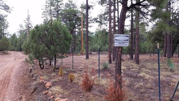 2044 Gilbert Ln., Overgaard, AZ 85933 Photo 5