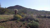 Home for sale: 40024 N. 12th St., Phoenix, AZ 85086