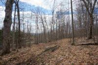 Home for sale: Lot 4 Button Rd., Fairfax, VT 05454