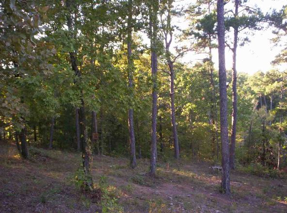 201-200 Lake Forest Shores, Hot Springs, AR 71913 Photo 12